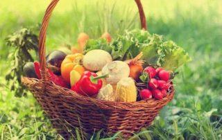 saison fruits et légumes